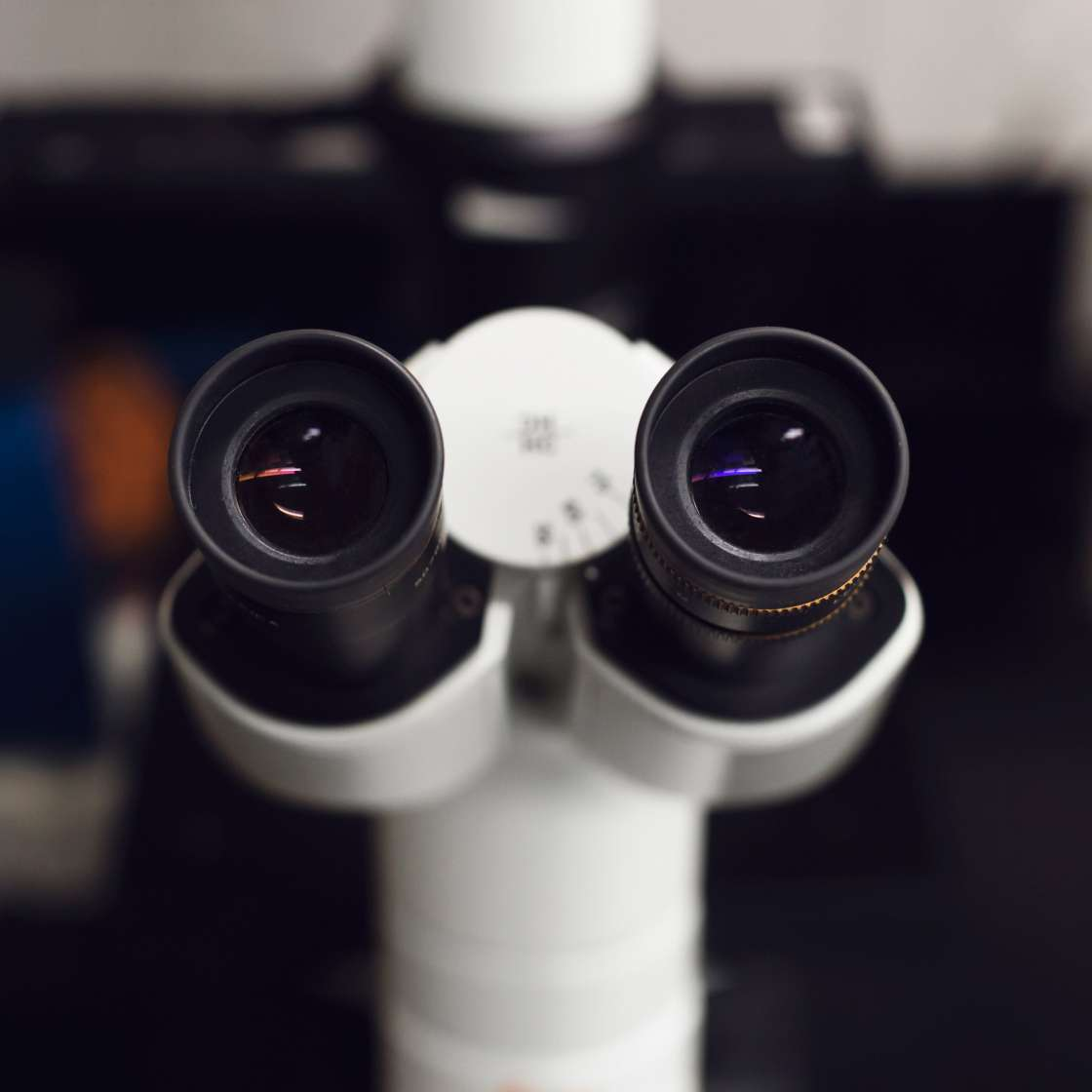 look-through-the-microscope